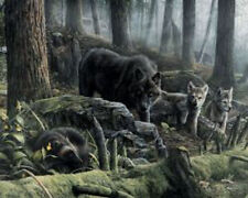 Wolves with Wolverine by Kevin Daniel Animal Woods Nature Print Poster 11x14