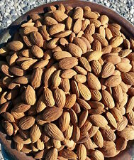 Raw Almonds - whole natural kernels - farm direct - no pesticides - 5lbs bag