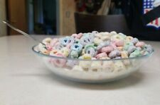 Fake Food Replica BOWL Of FRUIT LOOPS CEREAL Breakfast Home Stage Movie Prop
