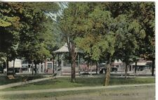 S791 Park Silver Creek NY postcard