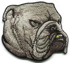 English bulldog embroidered applique iron-on dog patch S-1556