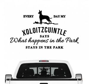 Xoloitzcuintle Vintage Hundeaufkleber Hundemotiv Auto Folie Nackthund Xolo