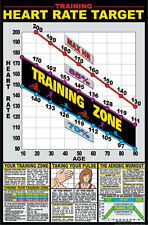 """Heart Rate Chart 24"""" x 36"""" Laminated Poster - F12_B By Fitnus Chart Series"""