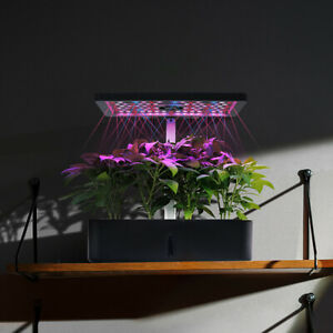 12 Pods Hydroponic Growing System Indoor Herb Garden Kit, Starter Kit with LED