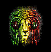 Lion Headphones Rasta Colors King Of The Jungle Hip Hop Funny T-Shirt Tee