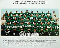 1966 Grey Cup Champion Saskatchewan Roughriders COLOR Team Picture 8 X 10 Photo