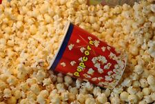 10 Kg  Popcorn Mais Mushroom ( 5kg+5kg)  2,2 Euro pro Kg