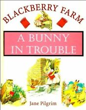 A Bunny in Trouble (Blackberry Farm),Jane Pilgrim