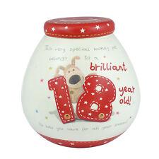 Boofle Brilliant 18 Year Old 18th Birthday Pots Of Dreams Money Pot Saving Gift