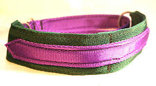 STRONG Equine Grade WEBBING Martingale Lurcher Whippet Dog Collar GREEN & PURPLE