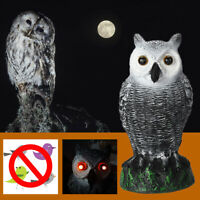 LED Augen Eule Dekofigur Vogelschreck Taubenschreck lebensecht Vogelabschreckung
