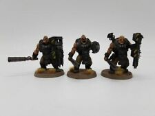 3 x Bullgryns for Warhammer 40K