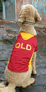 QLD Maroons Rugby Dog Jersey shirt x small 20cm to xx large 45cm - new