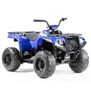 Yamaha Grizzly 24 Volt Electric Quad Bike Blue, 2 Speeds Plus