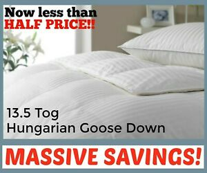 13.5 Tog Hungarian Goose Down Duvet *HIGHEST QUALITY* 100% Cotton Percale