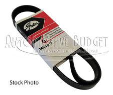 A/C Compressor & Alternator Belt for Ferrari 456 550 575 & 612