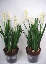 2 12in En pot Blanc Lavande Buissons Fleurs Artificielles En Soie Plantes OFFRE