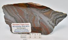 BANDED TIGER IRON SLICE,  MICROBIALITE, WESTERN AUSTRALIA S347