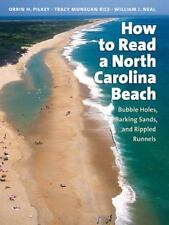 Southern Gateways Guides: How to Read a North Carolina Beach : Bubble Holes,...