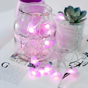 Love Heart Wedding String Fairy Light LED Light String Garden Garland lighting