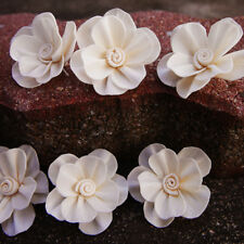 25 New Plum Blossom Sola Wood Diffuser Flowers 5 cm Dia. for crafts