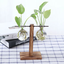 Wooden Stand Glass Hydroponic Flower Vase Terrarium Container Ball