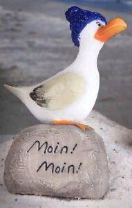 """Moin Moin ... Möve """" Hein """" Auf Stein mit Mütze / Kopf hoch"""