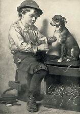 Antique c19th Old Art Print Animal Doctor YOUNG SURGEON Boy Veterinarian Pet Dog