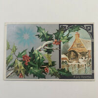 Antique Embossed Cat Christmas Postcard Kitten Cats Star 679 Germany
