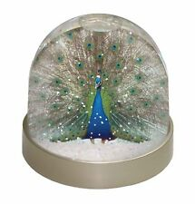 Rainbow Feathers Peacock Photo Snow Globe Waterball Stocking Filler G, AB-PE13GL