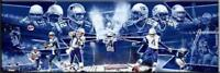 New England Patriots  Champions Team Photoramic #1045