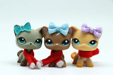 3x Littlest Pet Shop Lps  Short Hair Cat + Lps Accessories Collection Kid's Gift