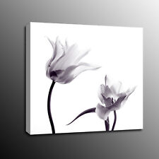 Canvas Prints Flowers Lily Wall Art Oil Painting Picture for Home Decor-No Frame