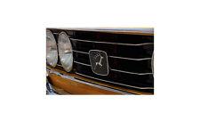 Triumpth Stag Grille Lights Orange A3 12x16 Metal Sign Aluminium