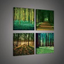 Set (4 pezzi) Tela Muro Immagine FORESTA NATURA Alba Allee 3fx2222s20