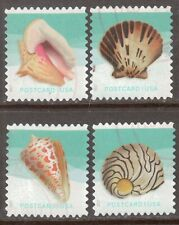 Scott #5163-66 Used Set of 4, Seashells Pane (Off Paper)