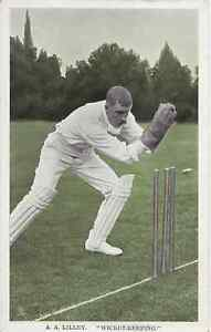 Cricket, A.A. Lilley, Tucks postcard, In The Open Famous Fielders Series 6452