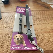 Ancol Leather Puppy Collar and Lead Set