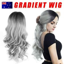Silver Grey Lace Front Wig Long Wavy Ombre Heat Resistant Synthetic Hair Wigs AU