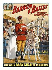 ART PRINT CIRCUS BARNUM BAILEY BABY GIRAFFE EVENT SPECTACLE SHOW COOL NOFL0574
