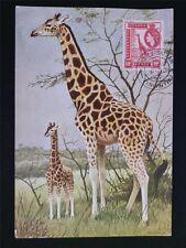 KENYA/UGANDA MK 1957 FAUNA GIRAFFE MAXIMUMKARTE CARTE MAXIMUM CARD MC CM c6469