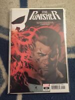 The Punisher #15 Current Series B Cover Immortal Variant [Marvel, 2019]