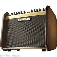 Fishman Loudbox Mini PRO-LBX-500 - 60-watt Acoustic Guitar Amp ~ BRAND NEW!!