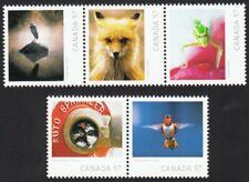 WILDLIFE PHOTOGRAPHY = FOX, HERON, birds = set 5 fr SS Canada 2010 #2388a-e MNH