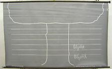 Schulwandkarte Wandkarte Grammatik Tafel Grammatiktafel Baum Schule 154x95cm