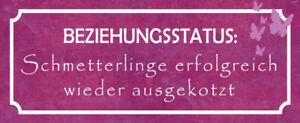 Beziehungsstatus Blechschild Schild gewölbt Metal Tin Sign 10 x 27 cm K0222