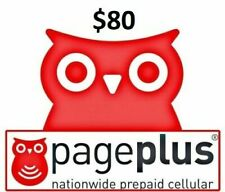 Page Plus $80 PIN code, 2000 minutes or 365 days service! I will load it for you