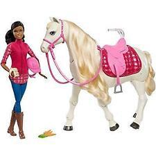 Caballo de Ensueño de Barbie Muñeca Barbie Conjunto de Juego Pelo Negro