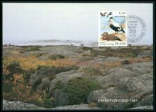 FINLAND ALAND MK FAUNA BIRDS DUCKS DUCK ENTEN CARTE MAXIMUM CARD MC CM m2038