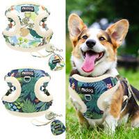 Soft Mesh Dog Step-in Harness and Leash w/Treat Bag Cute Pet Cat Walk Vest Small